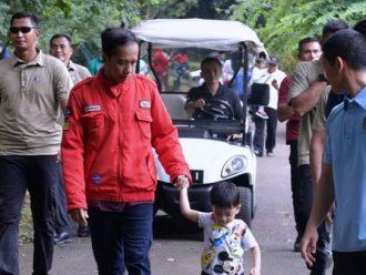 Bagi-Bagi Sertifikat Jadi Unggulan Program Jokowi-JK Sekarang Ini